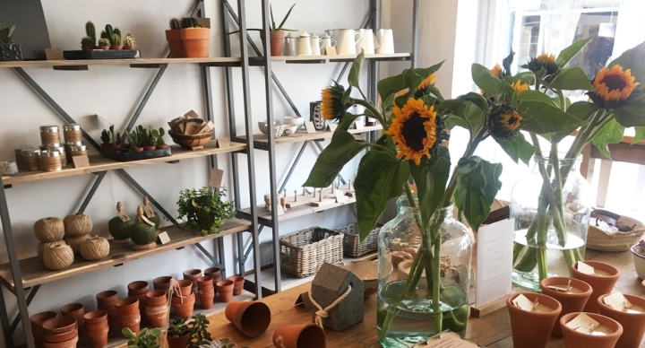 Things to do in Notts: An afternoon interiors shopping inSouthwell
